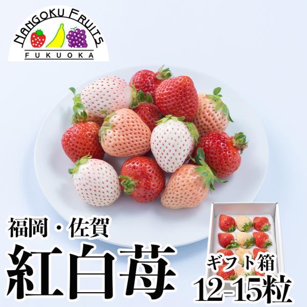 福岡・佐賀産紅白苺(あまおう&白いちご)2パック