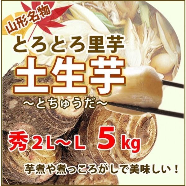 里芋 さといも 山形 秀 A品 2L 〜 L サイズ 5kg 土生芋 とちゅうだ 土付き 皮付き サトイモ 我家で採れた 里芋 山形産 送料無料