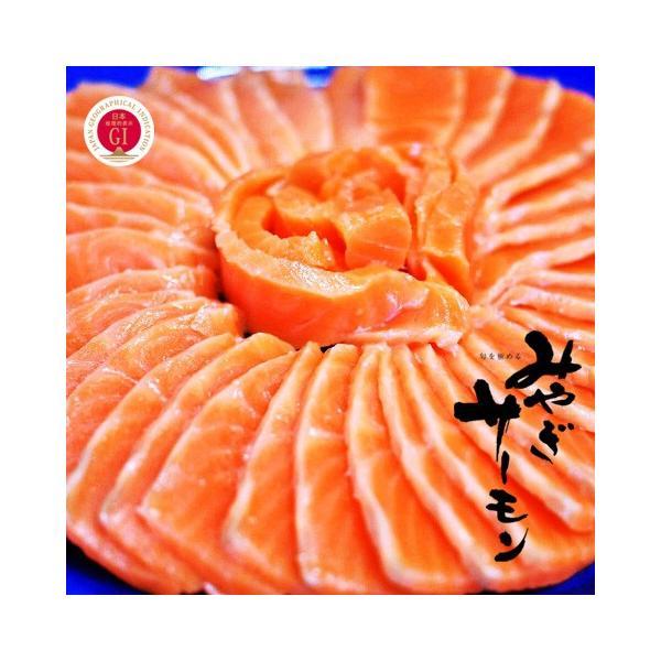 サーモン 刺身 みやぎサーモン 国産 鮭 約4kg〜4.8kg 72人前 〜 88人前 大トロ 生食用  銀ざけ 銀さけ 銀鮭 鮮魚  トロサーモン 鮭ハラス 鮭 刺身