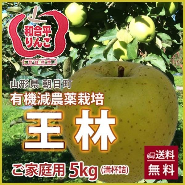 りんご 王林 おうりん 5kg  ご家庭用 満杯詰め 有機減農薬栽培 朝日町 和合平 葉取らずりんご 訳あり 送料無料