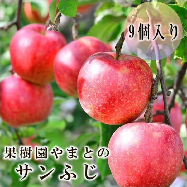 果樹園やまとのサンふじ 「9個入り」|kajyuen-yamato