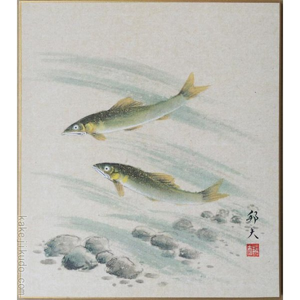 高級色紙「鮎」邦夫(色紙絵)
