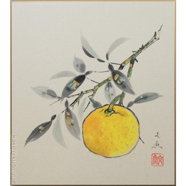 高級色紙「柚子」文魚(色紙絵)