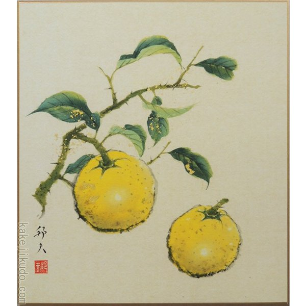 高級色紙「柚子」邦夫(色紙絵)