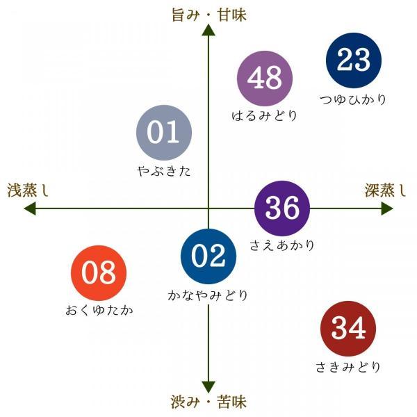 角田製茶 かなやみどり 奥八女シングルオリジンティー 30g 【レターパック可】|kakudaseicha|05