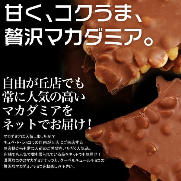 訳あり 割れチョコ 500g 選べる5種類 チョコレート チュベ・ド・ショコラ マカダミアナッツ 送料無料 グルメ ポイント消化|kamachu-shop|04