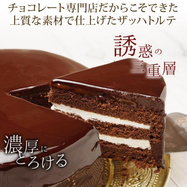情熱と誘惑のザッハトルテ  グルメ  割れチョコ専門店 チョコレートケーキ/チョコケーキ/濃厚チョコ2倍/チュベ・ド・ショコラ|kamachu-shop|02