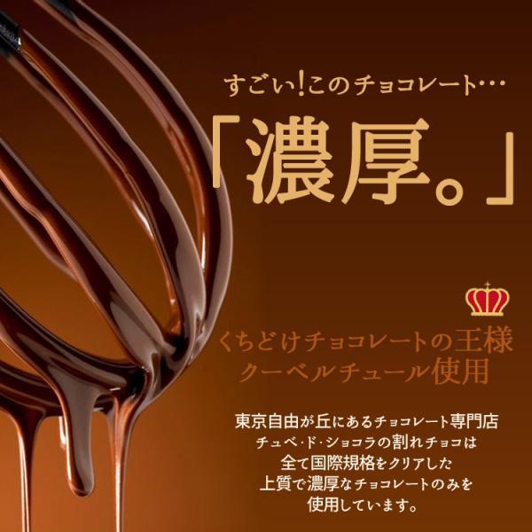 ミルクは2/6以降発送 情熱と誘惑のザッハトルテ バレンタイン  グルメ  割れチョコ専門店 チョコレートケーキ/チョコケーキ/チュベ・ド・ショコラ|kamachu-shop|04