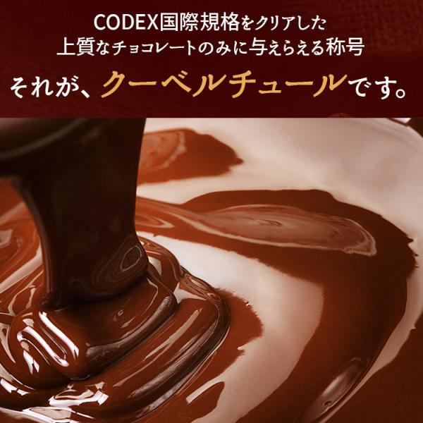 ミルクは2/6以降発送 情熱と誘惑のザッハトルテ バレンタイン  グルメ  割れチョコ専門店 チョコレートケーキ/チョコケーキ/チュベ・ド・ショコラ|kamachu-shop|05