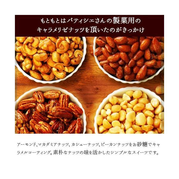 訳あり 焼き菓子 クッキー みんなのおやつ ※ふぞろいクッキーは7/17以降発送 フロランタン あめがけナッツ  [ごま]|kamachu-shop|09