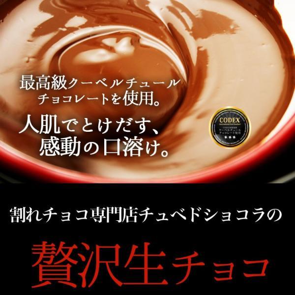 情熱と誘惑の生ショコラ 生チョコ 生チョコレート 割れチョコレート チュベ・ド・ショコラ ギフト|kamachu-shop|03