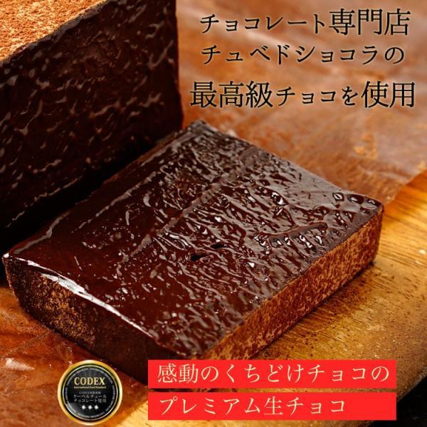 情熱と誘惑の生ショコラ 生チョコ 生チョコレート 割れチョコレート チュベ・ド・ショコラ ギフト|kamachu-shop|06