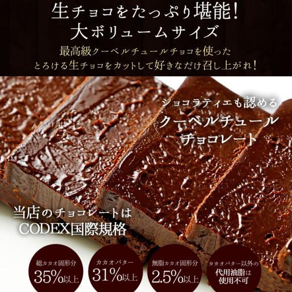 情熱と誘惑の生ショコラ 生チョコ 生チョコレート 割れチョコレート チュベ・ド・ショコラ ギフト|kamachu-shop|07