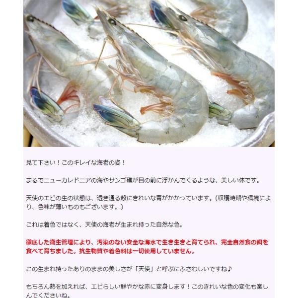 小分け 5尾入 天使の海老 天使のエビ 天使のえび えび エビ 海老 刺身 冷凍 1パック|kamasho|06