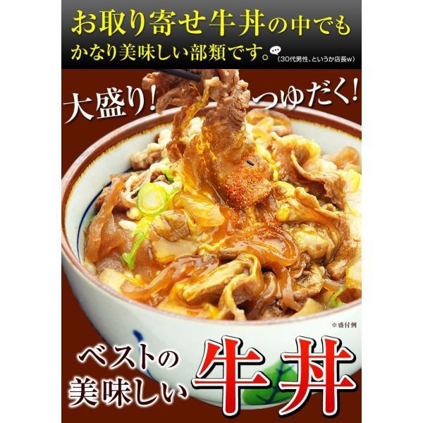 牛丼の具 冷凍 牛丼の素 日東ベストの牛丼DX 業務用 冷凍食品 185g入を5パック|kamasho|03