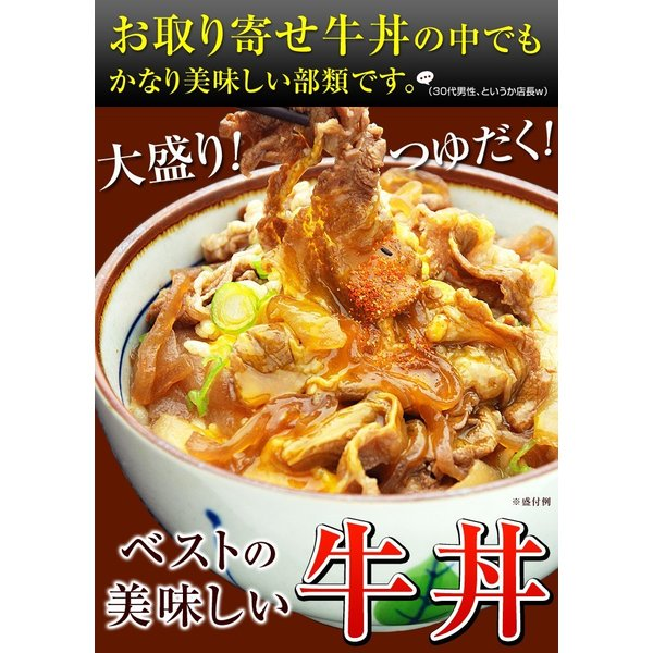 牛丼の具 冷凍 牛丼の素 日東ベストの牛丼DX 業務用 冷凍食品 185g入を20パック|kamasho|03