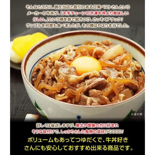 牛丼の具 冷凍 牛丼の素 日東ベストの牛丼DX 業務用 冷凍食品 185g入を20パック|kamasho|05