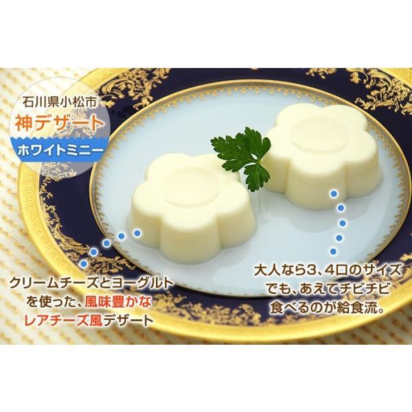 ホワイトミニー 5ヶ kamasho 06