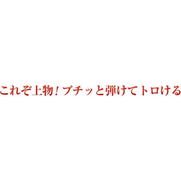 いくら 醤油漬け 北海道 イクラしょうゆ漬け イクラの醤油漬け いくら醤油漬け 甘口 特選品 200g プレゼント|kamasho|02