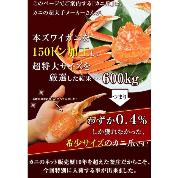 【2018年分完売しました】カニ 特大 ズワイガニ 爪 ポーション 生冷凍 ずわい蟹 しゃぶしゃぶ用 7Lサイズ ずわいがに爪 かにしゃぶ 内容量 1kg|kamasho|02