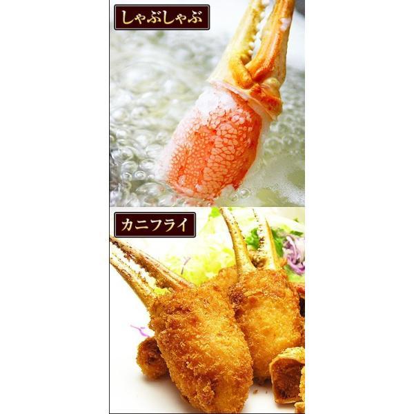 カニ 特大 ズワイガニ 爪 ポーション 生冷凍 ずわい蟹 しゃぶしゃぶ用 7Lサイズ ずわいがに爪 かにしゃぶ 内容量 1kg|kamasho|07