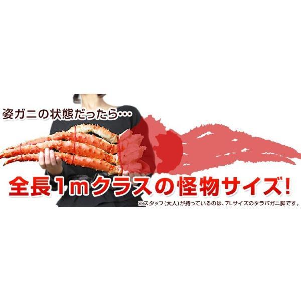 タラバガニ 特大 生 たらば蟹 たらばがに 生たらば 生タラバ 生タラバガニ 特大 アラスカ産 7Lサイズ 1肩分 氷膜含まずに1.2kg(解凍前) 半身 セクション|kamasho|15