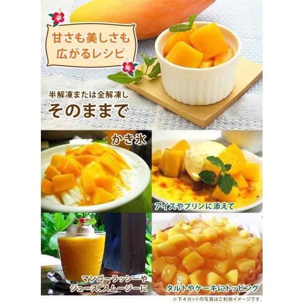 マンゴー 冷凍マンゴー 500g カット済み 完熟マンゴー 冷凍フルーツ|kamasho|06