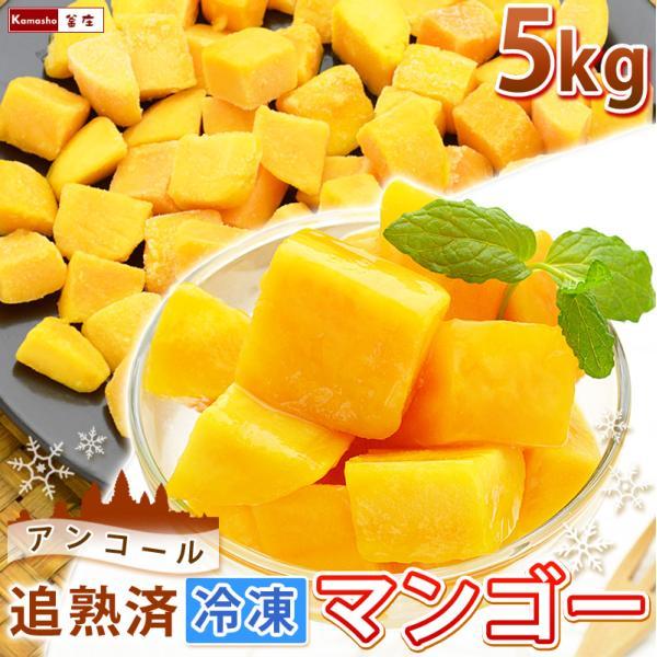 ポイント2倍 マンゴー 冷凍マンゴー 業務用 カット済み 完熟マンゴー 冷凍フルーツ 500gを10袋 計5kg|kamasho