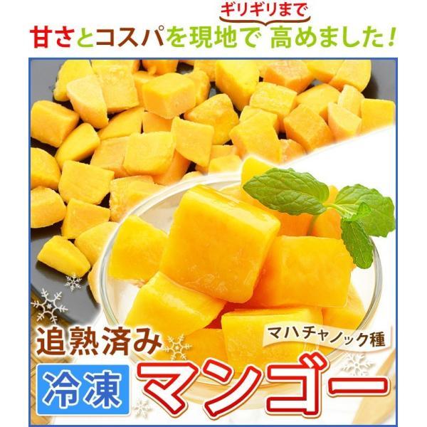 ポイント2倍 マンゴー 冷凍マンゴー 業務用 カット済み 完熟マンゴー 冷凍フルーツ 500gを10袋 計5kg|kamasho|02
