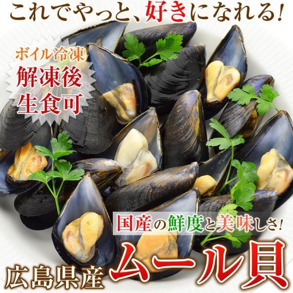 ムール貝 広島県産 国産 500g(15-25粒)を4パック まとめ買い|kamasho|03