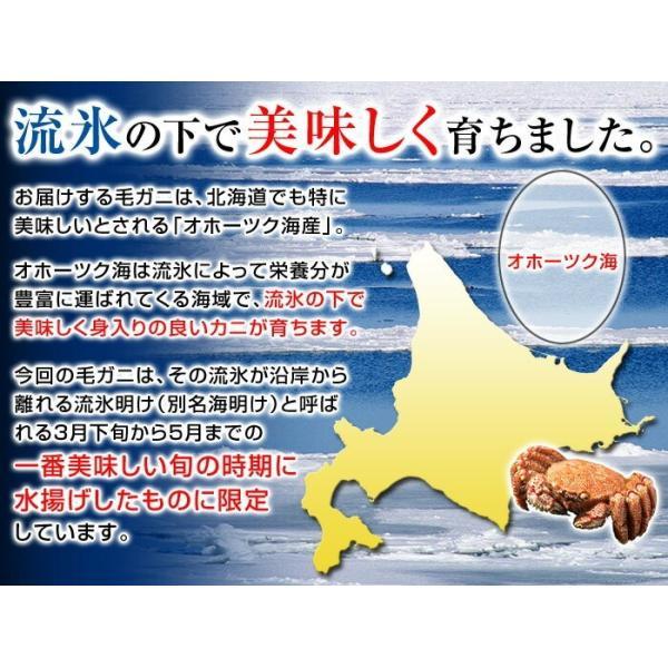 毛ガニ 北海道産 毛蟹 オホーツク産 毛がに 姿 ボイル冷凍 約400g 1尾 お歳暮 ギフト 御歳暮 カニ 年末年始 お正月 クリスマス ごちそう 年越しグルメ|kamasho|04