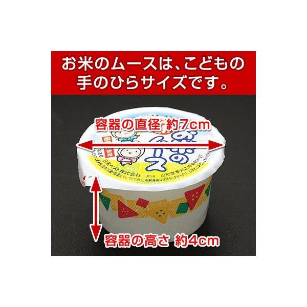 お米のタルト 12ヶ & お米のムース 10ヶ 米米セット 学校給食 デザート 給食|kamasho|02