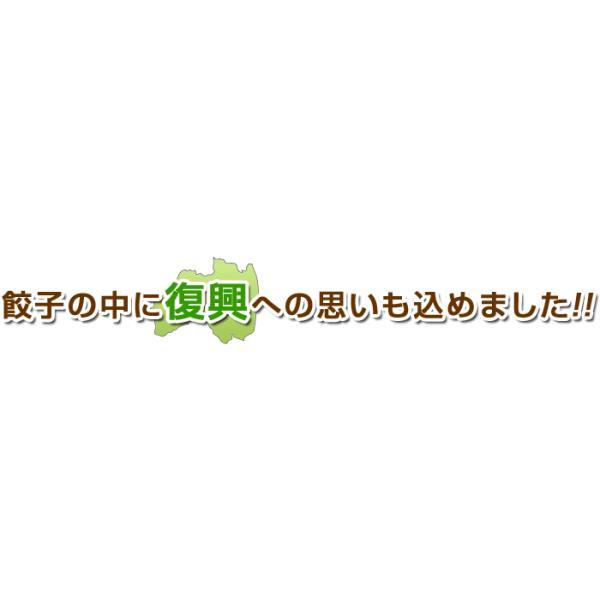ふくしまギョーザ4種セット(肉餃子12ヶ、ピリ辛ぎょうざ12ヶ、ニンニクギョウザ12ヶ、ニラ餃子12ヶ)|kamasho|02