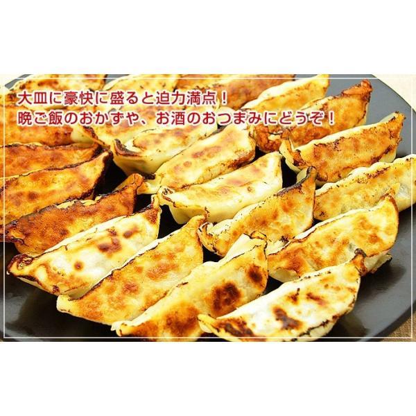 ふくしまギョーザ4種セット(肉餃子12ヶ、ピリ辛ぎょうざ12ヶ、ニンニクギョウザ12ヶ、ニラ餃子12ヶ)|kamasho|07