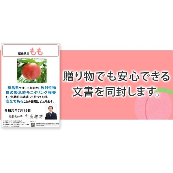 8月下旬頃発送分 桃 ギフト フルーツ 福島 予約 白桃系品種 特秀品 1.8kg 5から7玉入 1箱 もも モモ 果物 送料無料 8月17日以降 収穫次第発送|kamasho|11