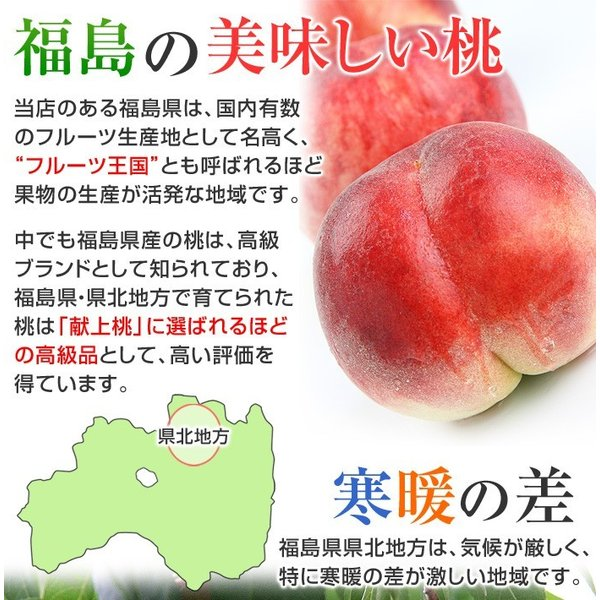8月下旬頃発送分 桃 ギフト フルーツ 福島 予約 白桃系品種 特秀品 1.8kg 5から7玉入 1箱 もも モモ 果物 送料無料 8月17日以降 収穫次第発送|kamasho|06