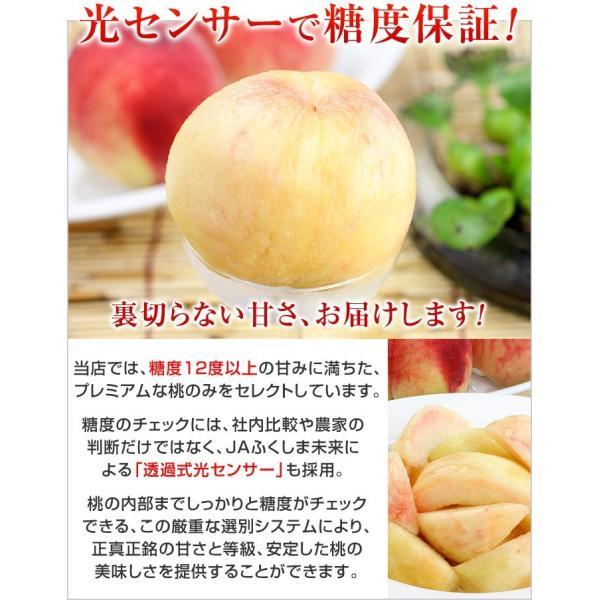 8月下旬頃発送分 桃 ギフト フルーツ 福島 予約 白桃系品種 特秀品 1.8kg 5から7玉入 1箱 もも モモ 果物 送料無料 8月17日以降 収穫次第発送|kamasho|09