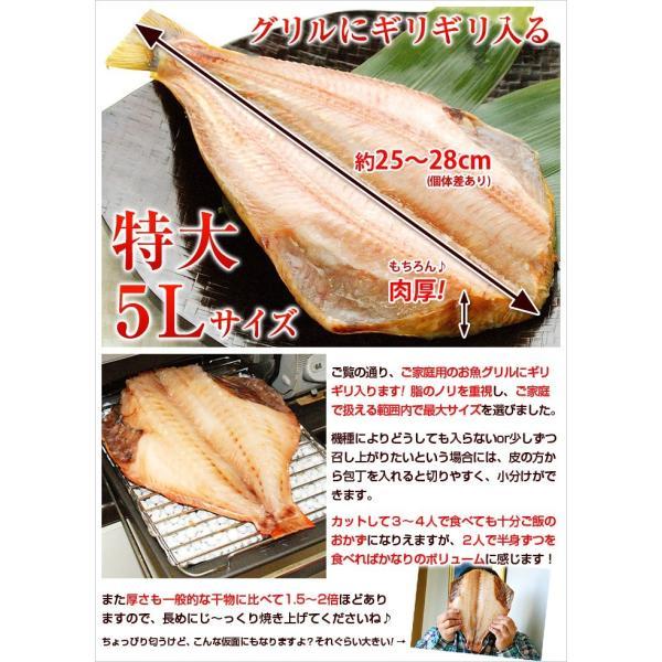 トロほっけ(シマホッケ)またはトロ赤魚を2枚選べる 特大 5Lサイズ 干物 セット ひもの|kamasho|05