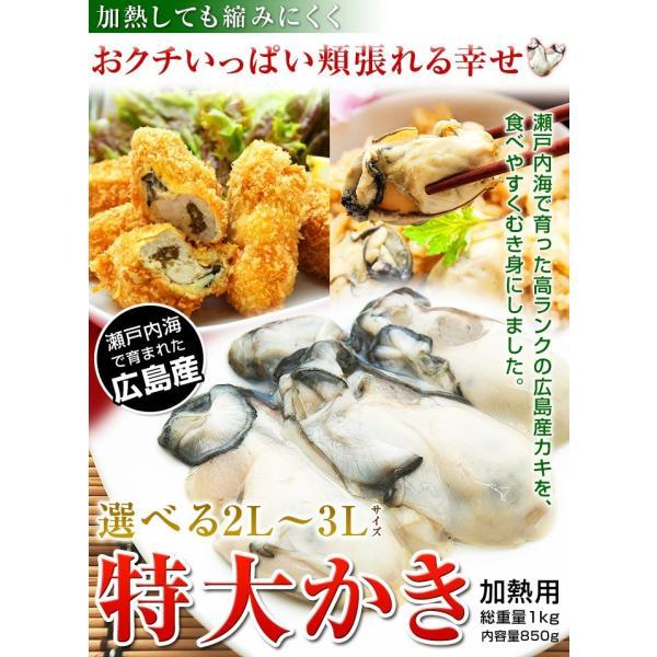 3Lまたは2L 選べる 牡蠣 大粒 カキ 国産 特大 冷凍牡蠣 剥き身 加熱用 広島県産 剥きカキ (総重量 1kg 内容量 850g )|kamasho|02