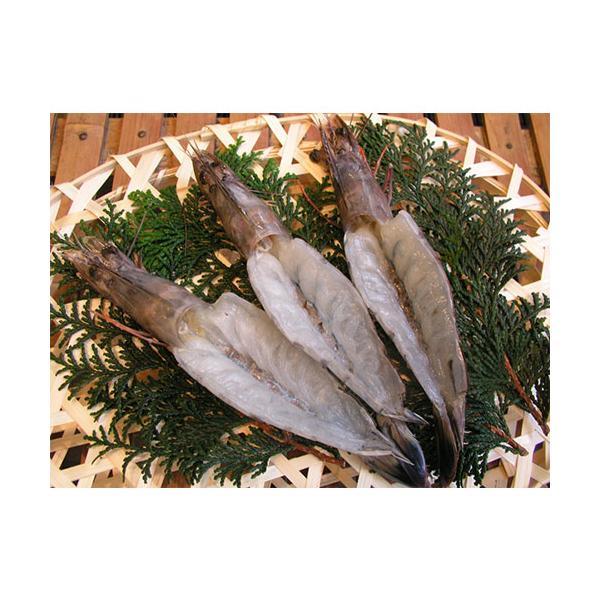 天使の海老 干物(1尾) 無添加 クリスマス お正月 熱海 釜鶴 ひもの ギフト
