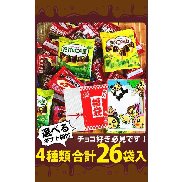 人気駄菓子チョコお試しデラックス版! 14点(バラで合計40点)詰め合わせセット ゆうパケット便 メール便 送料無料|kamenosuke|07