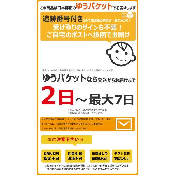 東ハト 濃堅パック 濃堅パック ビーノ うましお味 1袋(45g)×4袋 ゆうパケット便 メール便 送料無料|kamenosuke|03