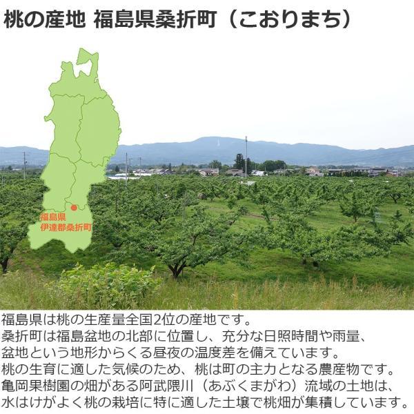 桃ジュース 福島県桑折町産桃使用 200ml お試し 2本 送料無料|kameokakajuen|02