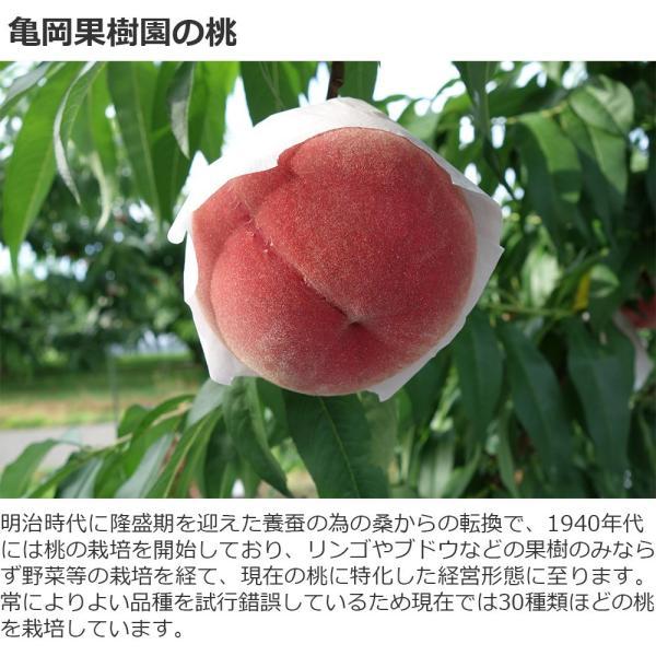 桃ジュース 福島県桑折町産桃使用 200ml お試し 2本 送料無料|kameokakajuen|03