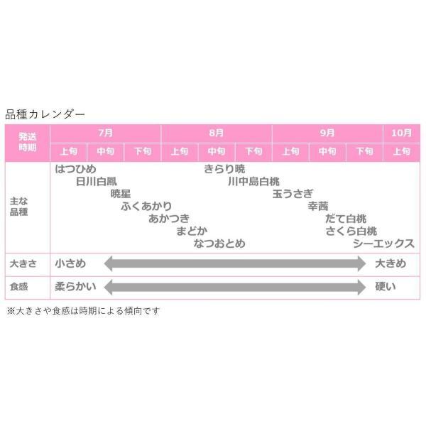 桃 福島県桑折町産 品種おまかせ 通常品 約5kg(11〜20個) 8月上旬-9月中旬|kameokakajuen|02