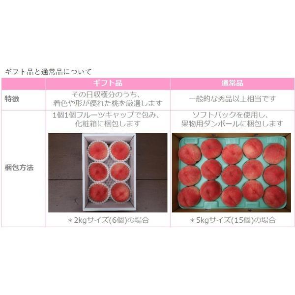 桃 福島県桑折町産 品種おまかせ 通常品 約5kg(11〜20個) 8月上旬-9月中旬|kameokakajuen|03