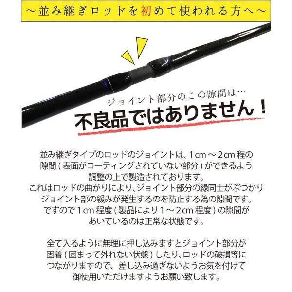 シーバスセット ビギナーにオススメ グローブライド×メジャークラフト メーカー品質の4点セット 【大型商品】|kameya-ec1|05
