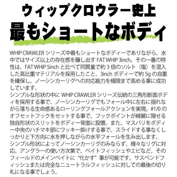 RAID JAPAN レイドジャパン ファットウィップ 3インチ 即納可能|kameya-lure|02