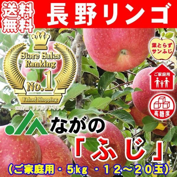 りんご「ふじ」 家庭用訳あり サンふじ キズありリンゴ約5kg 12〜20玉 信州 長野産林檎 快福りんご 【他商品との同梱不可】|kameya