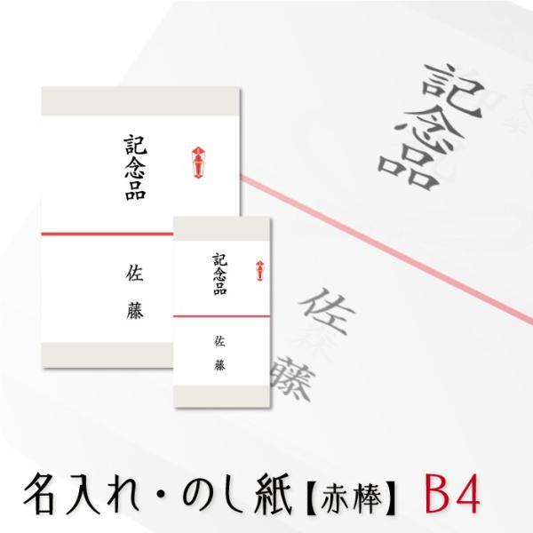 のし紙 熨斗 印刷 略式 赤棒 熨斗紙 印刷 名前入り 名入れ記念品 粗品 寸志 20枚 B4サイズ 送料無料 送料無料